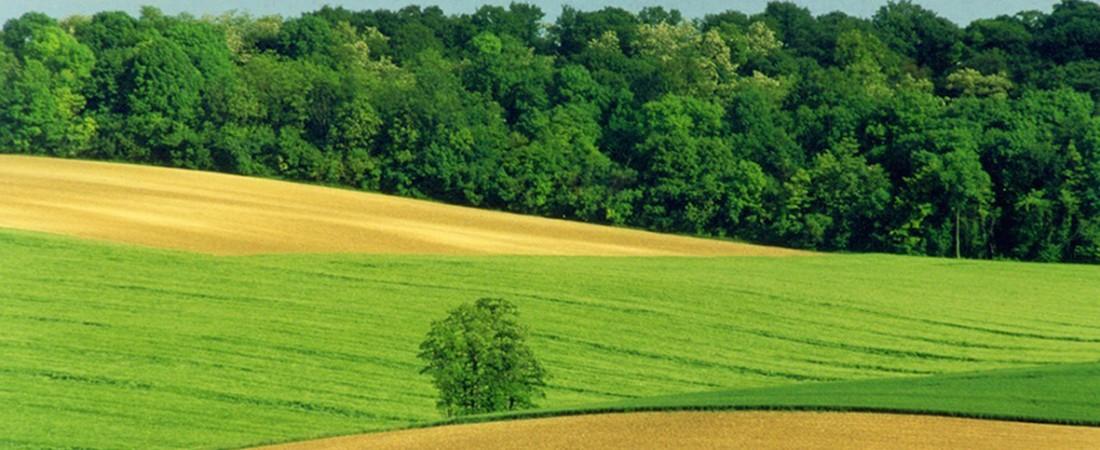 Nature et Paysans