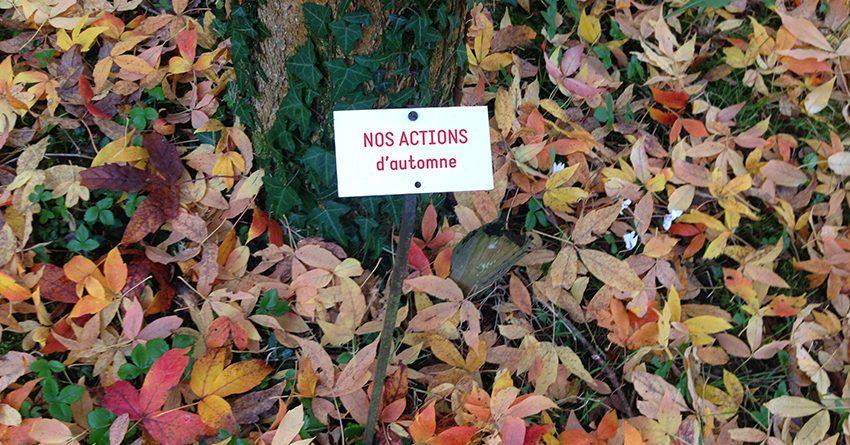 Fête d'automne du Ruban Vert et Troc de plantes