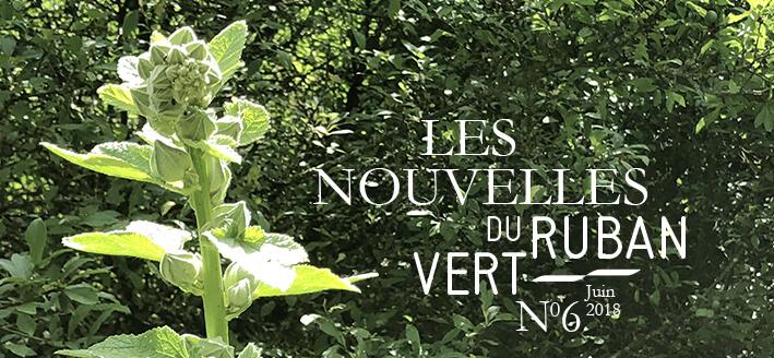 Les Nouvelles du Ruban Vert N°6 – Juin 2018
