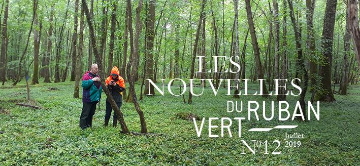 Les Nouvelles du Ruban Vert – Juillet 2019