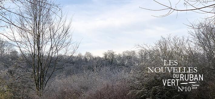 Les Nouvelles du Ruban Vert – Janvier 2019